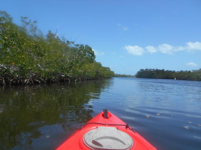 April 22 AM 2021 Kayaking Guest Tour Images