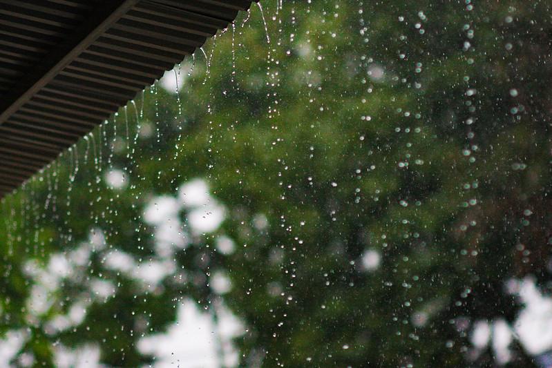 The rain .