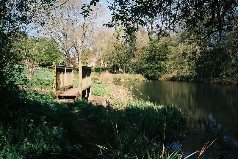 Old Sneed Park Lake