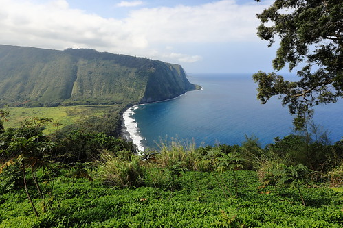 lookout waipio valley waipiovalley hawaii water nature grass landscape mountain hill tree sea cliff vegetation outdoors promontory coast sky lake river ocean rock outdoor travel naturereserve noperson wilderness highland green scenery bush seashore flora mountscenery plant island escarpment background summer view nationalpark hillside wood large overlooking beach terrain grassy scenic