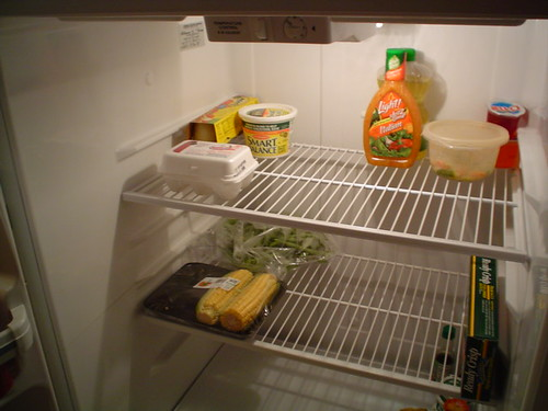 Empty fridge | by Lucy Librarian