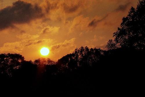 autumn orange nature silhouette manipulated sunrise catchycolors louisiana seasons mrgreenjeans gaylon abigfave gaylonkeeling
