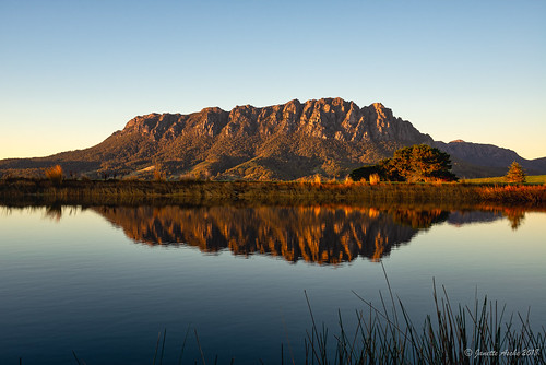 australia eaglesnestretreat mountain mtroland tasmania tassie westkentish dam landscape reeds reflection sunrise water