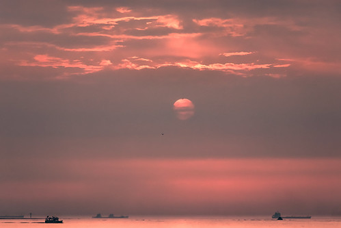 sun sunset water river partlycloudy night float 淡水 渡船 夕陽 taipei taiwan 日落 船 海 水 red bright dim horizon cloud boat ship transportation bird asian sea ocean shore tamsui
