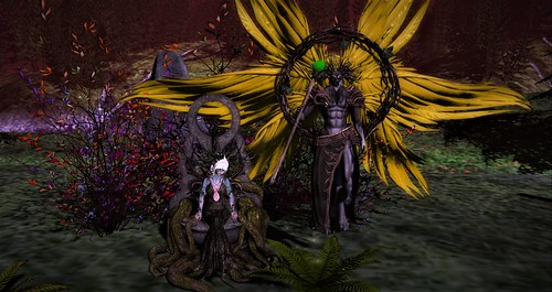 Nightshade Consort