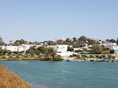Tunis Karthago, Der runde punische Kriegshafen, hinten Byrsa-Hügel