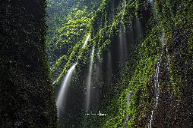 The mystical Madakaripura Waterfall in East Java Province, Indonesia in the morning.