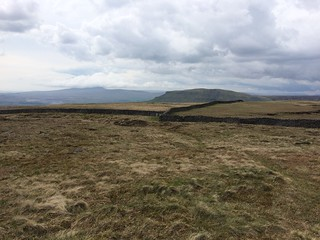Pen-y-Ghent from Fountains Fell | by malky_c