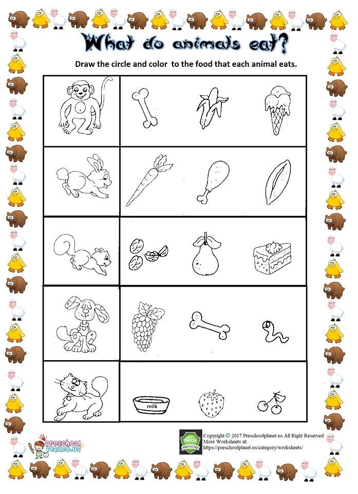 what do animals eat worksheet what do animals eat as we. Black Bedroom Furniture Sets. Home Design Ideas