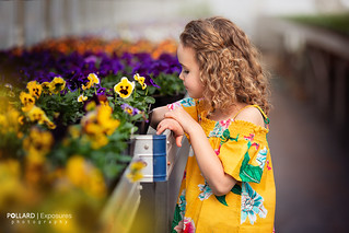 Flowers | by Pollard Exposures Photography
