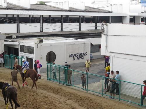 ロイヤルターフクラブ競馬場の装鞍所からの出入口