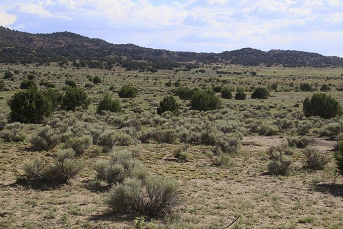2016 desert forest gps landscapes mountains newmexico panoramio usa unitedstatesofamerica