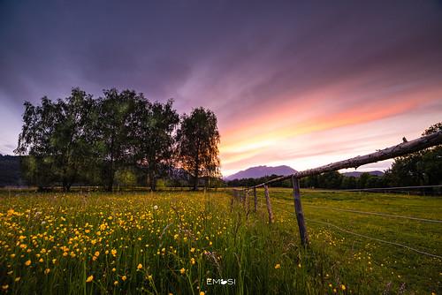 kärnten carinthia austria österreich nikond800 irix15mm24 villach spring frühling sonnenuntergang sunset feld field