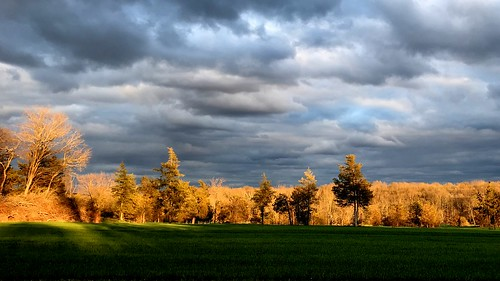 sunset clouds field whitehouse station nj readington trees