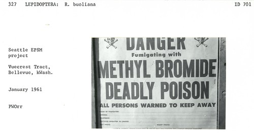 1961. Methyl bromide warning sign. Seattle European pine shoot moth fumigation project. Vuecrest Tract, Bellevue, Washington.