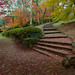 Image: Laburnum Steps Revisited