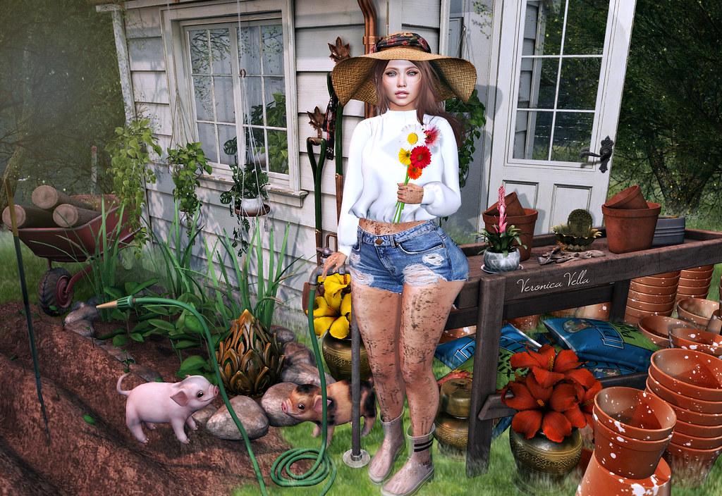 {Blog 435} The Gardener