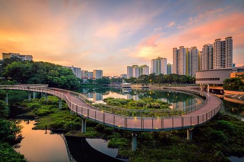 sunrise landscape urbanscape singapore singaporescape bukitpanjang bukitpanjangpark pangsua pangsuapond hdb hdbscape hdbheartland bridge waterscape building heartland
