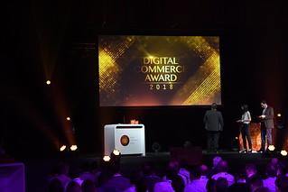 Digital Commerce Award 2018   by Digital Commerce Connect-Award-Night