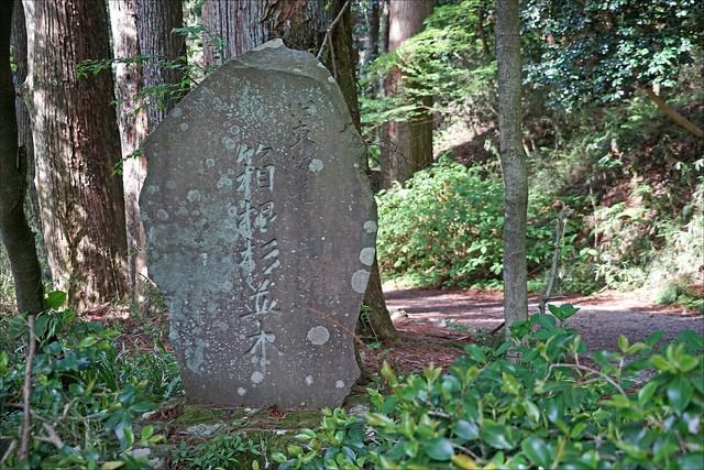 L'ancienne route du Tokaïdo (Hakone, Japon)