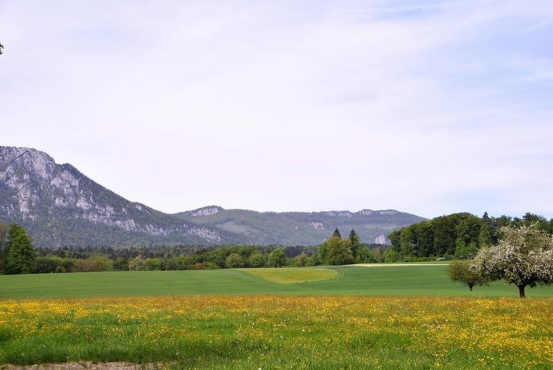 Feldbrunnen 29.04 (5)