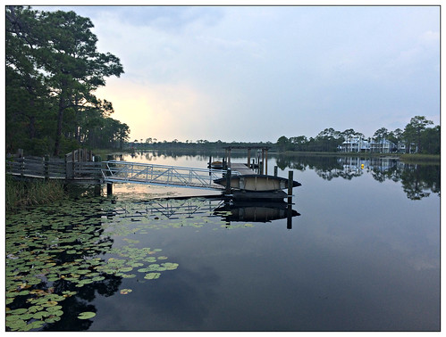 seaside westernlake lilies evening 2018 florida watercolor 30a fl usa canoe iphone5s contrejour landscape reflections