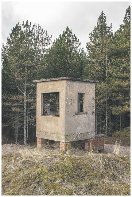 Observation Hut, Tentsmuir-2