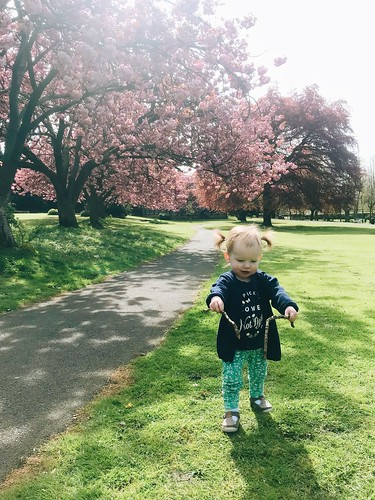 what to expect at 18 months toddler | by msjenallison