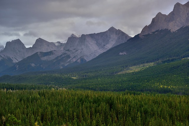 A Look Across the Mountainside of the Rundle Peaks to the Three Sisters (Banff National Park)