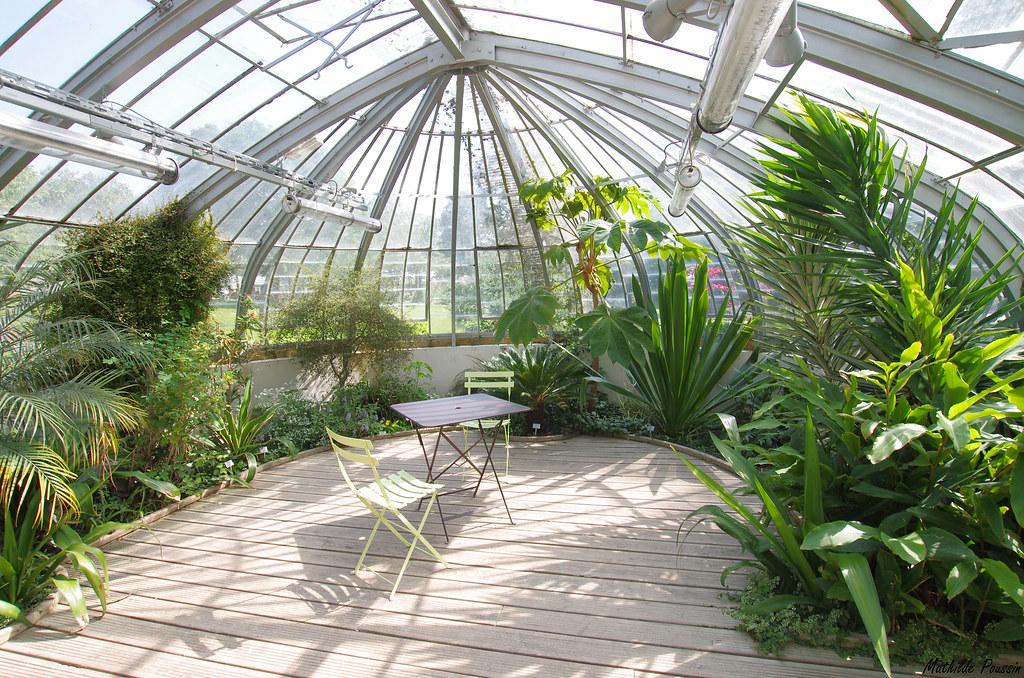 Jardin des plantes - Nantes   Mathilde Poussin   Flickr