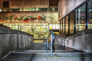 Steps - Birmingham Central Library