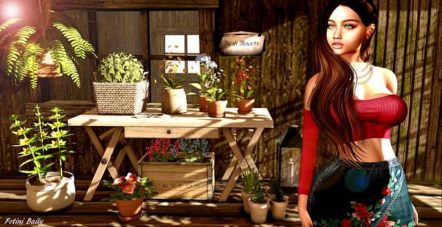 Little Garden ^^