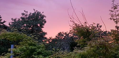 sunset sonnenuntergang braunschweig germany deutschand