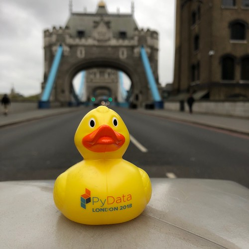 PyData London Debugging Duck | by njradcliffe