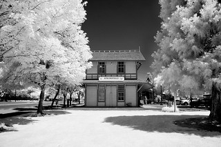 Springfield area chamber of commerce - infrared