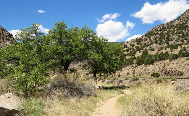 Path to a Picnic