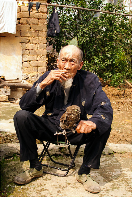 Old Man and his Owl