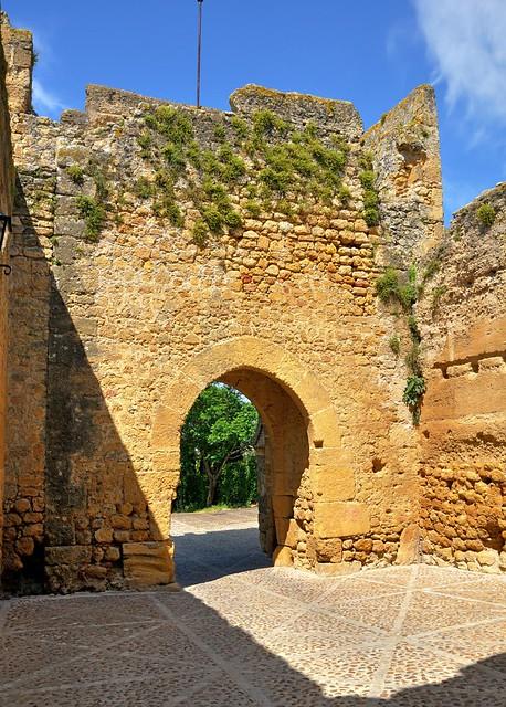 Carmona : Alcázar del Rey Pedro