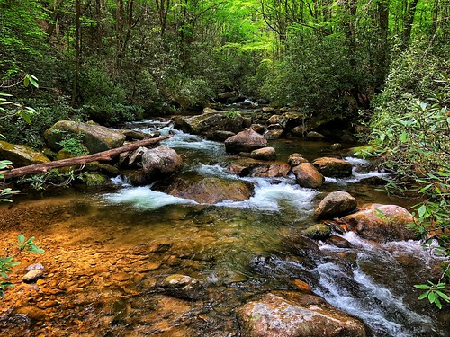 southcarolina spring appalachianmountains smokymountains mountains stream woods forest jonesgapstatepark