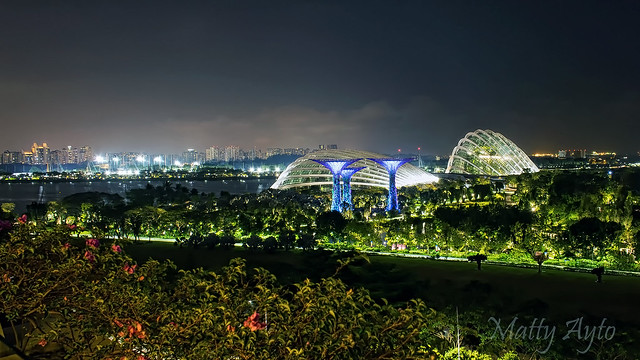 Gardens by the Bay, Singapore -7452