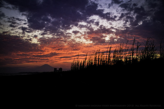mt fuji & sunset shonan