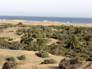 Maspalomas Dunes - Facing the Sea | by elsua