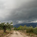 stormy sky by Marlis1