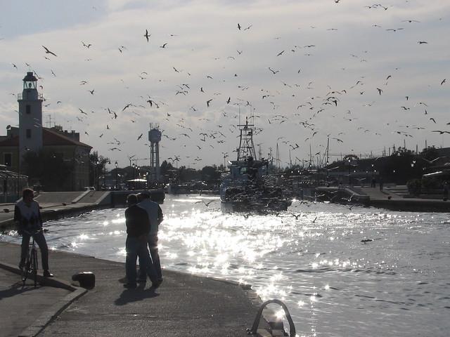 Cesenatico - Porto canale