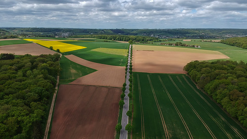 Field view | by ZoRRaW photography