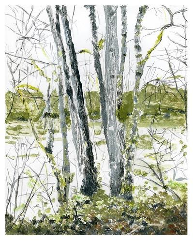 oregon gouache pencil printmaking print willametteriver trees rural landscape