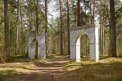 Лесной портал