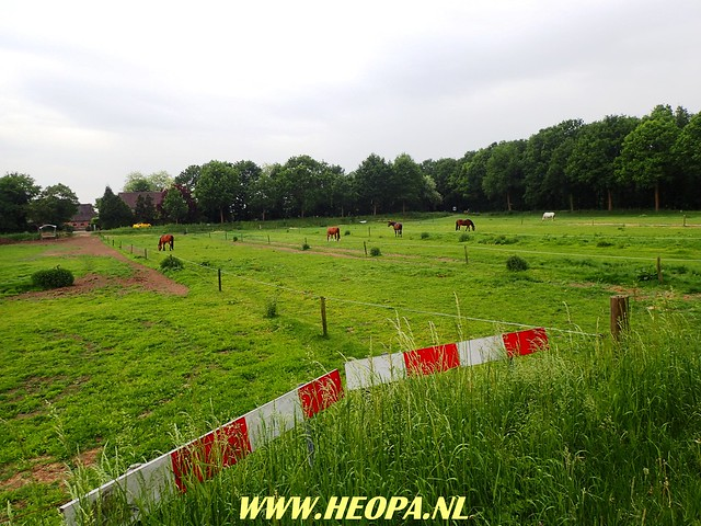 2018-05-16   Sint-    Michielsgestel     25 Km (11)