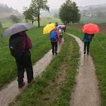 2018_05_16 _Luzernerhinterland_Beat  (128)