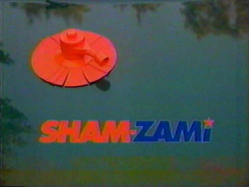 shamzami33